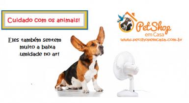 Cuidados com os animais no período de seca